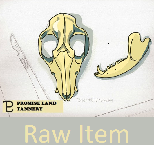 Raw Item Cover Square